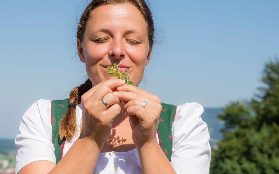 bergheimkraeuterfuehrungen-pflanze7-(c)tvbbergheim-bryanreinhart