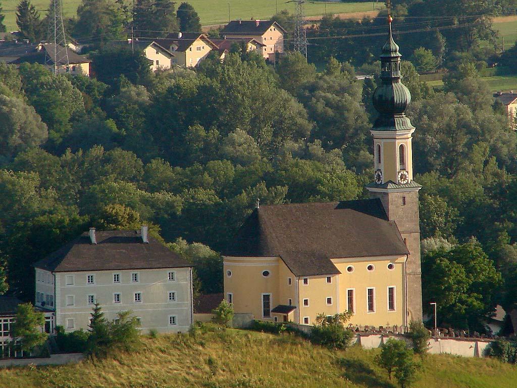 Bergheim: Fischotter-Baby in Not gerettet - SALZBURG24